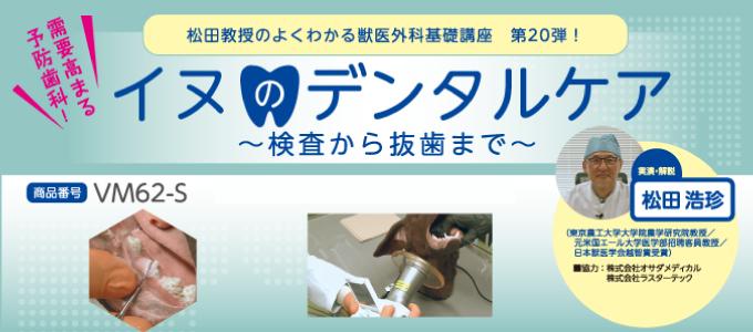 VM62松田教授のよくわかる獣医外科基礎講座「イヌのデンタルケア ~検査から抜歯まで~」